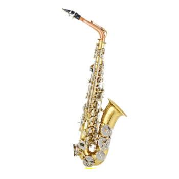 元業楽器の金音JYAS-E 100 DサクソフォーンE中音ベントサックス風