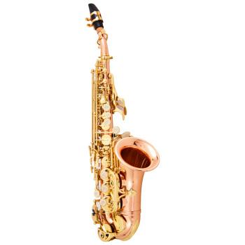亨韻(Henlucky)亨韻楽器はB調の子供高音質のサックスの銅の小さい曲管のメーカー直売します。終身保証の速達は郵送します。
