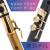 簡単なサックスの簡単な小さいサクソフォーンの楽器のミニの小さいクラリネットの高音の次の中音のポケットの楽器の初心者は入門を学んでゴールドの楽器のFを振って+Cを加減します