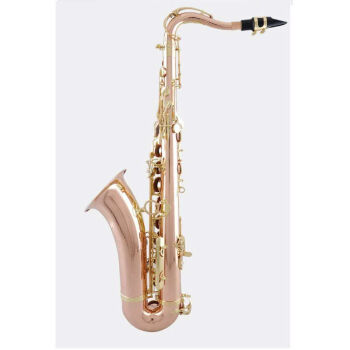 ヤマハの中音YTS-857 EX 62のB調サクのソロジーについて、ヤマハの同種のリン銅の中音875 EXを試験します。